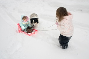 a big sister pulling her little sister in a sled