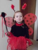 Jenna butterfly